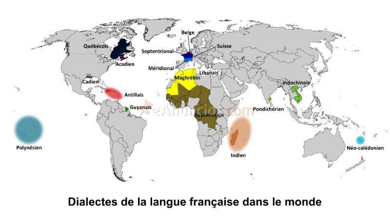CLASES PARTICULARES DE FRANCES